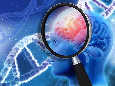 brain genetics